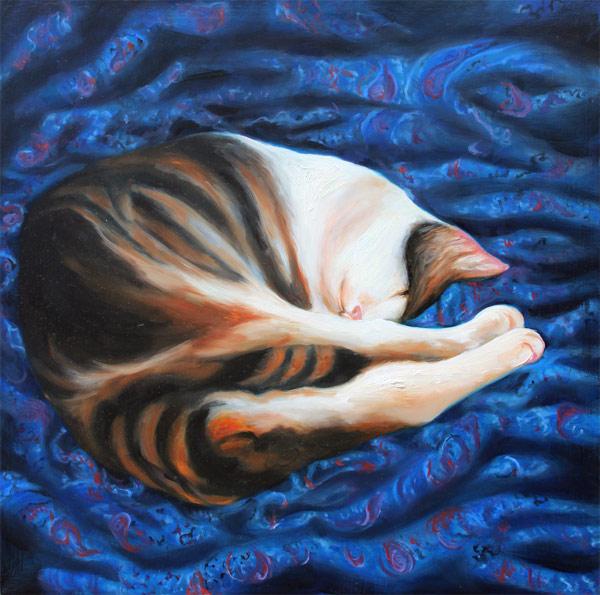 Cat on Blue Silk