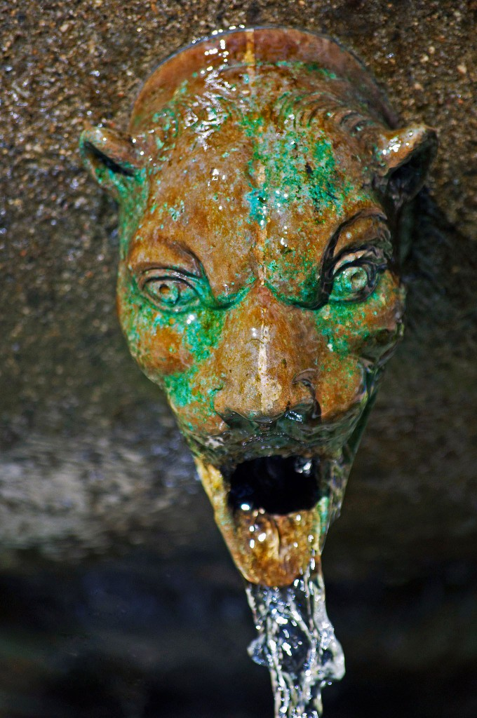 gargoyle with water spouting out of mouth