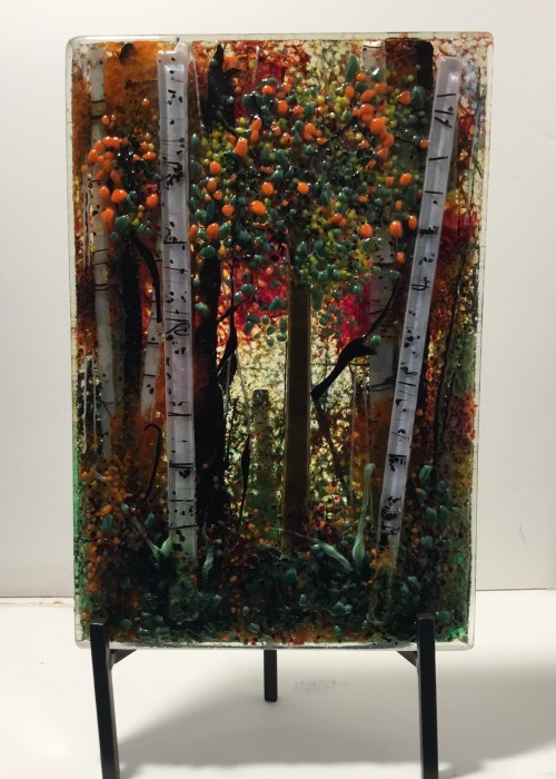 forest with some birch trees