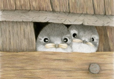 baby birds looking out barn opening
