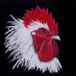 whited head of rooster