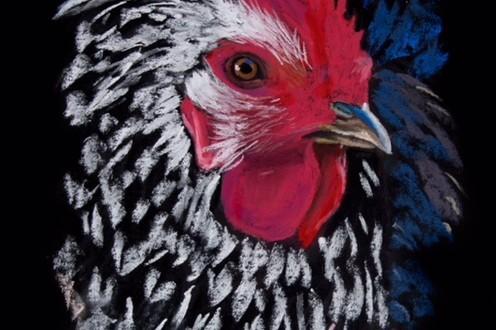 rock rooster head