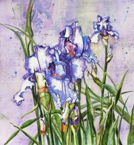Blue and White Iris Trio