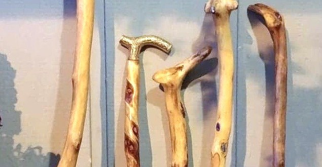 walking sticks and canes