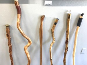 crooked and curved sticks