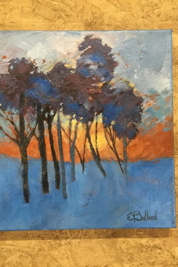 contrasting blue tree